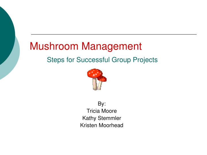 mushroom management steps for successful group projects n.
