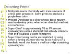 detecting prints19