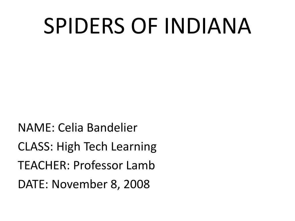 spiders of indiana l.