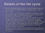 details of the life cycle1