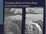 vegetation removal from puget sound lidar consortium