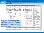 example pakistan labour force survey 2005 06