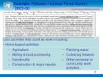 example pakistan labour force survey 2005 0625
