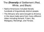the diversity of settlement red white and black