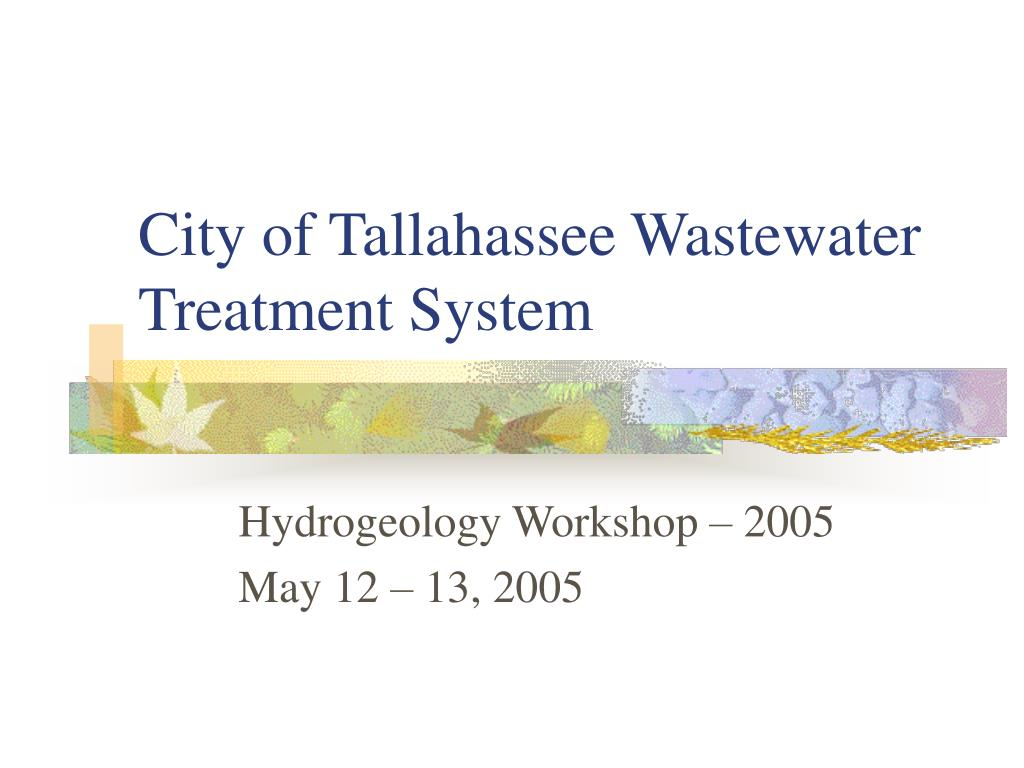 city of tallahassee wastewater treatment system l.