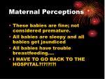 maternal perceptions