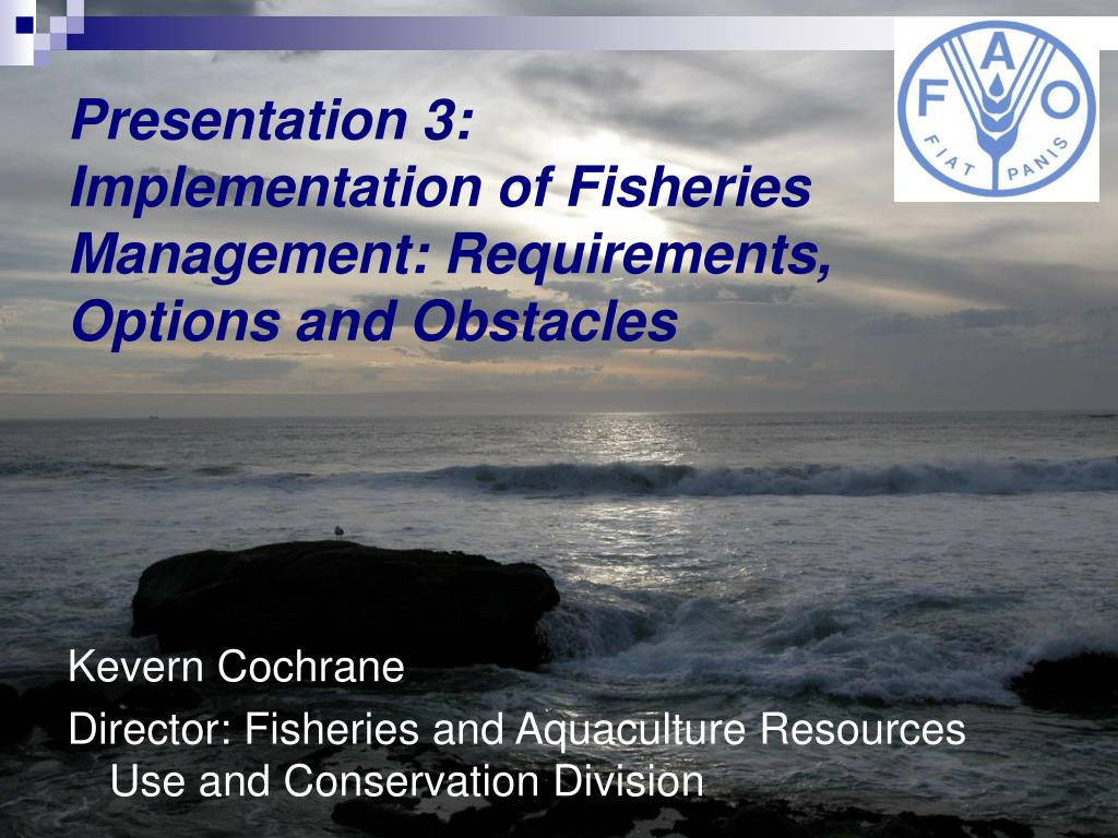 presentation 3 implementation of fisheries management requirements options and obstacles l.