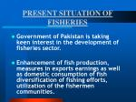 present situation of fisheries7