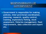 responsibility of government