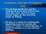 working hours working day38