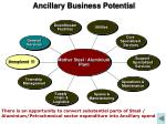 ancillary business potential