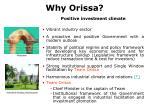 why orissa
