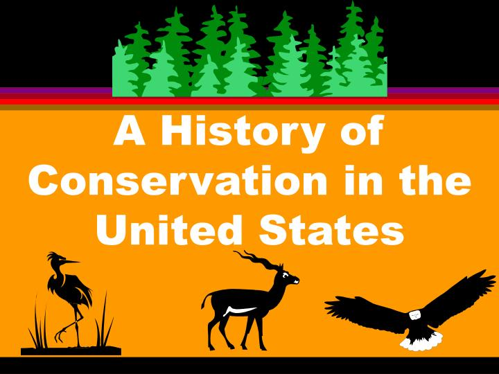 a history of conservation in the united states n.