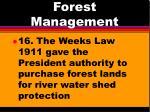 forest management11
