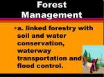 forest management12