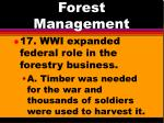 forest management13
