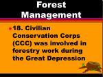 forest management14