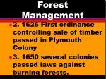 forest management2