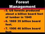 forest management4