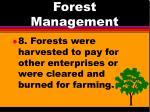 forest management5