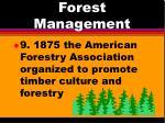 forest management6