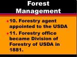 forest management7