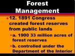 forest management8