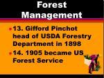 forest management9