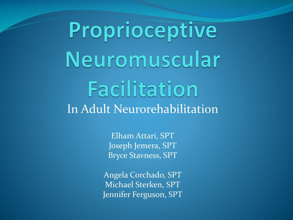 proprioceptive neuromuscular facilitation l.
