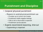 punishment and discipline31