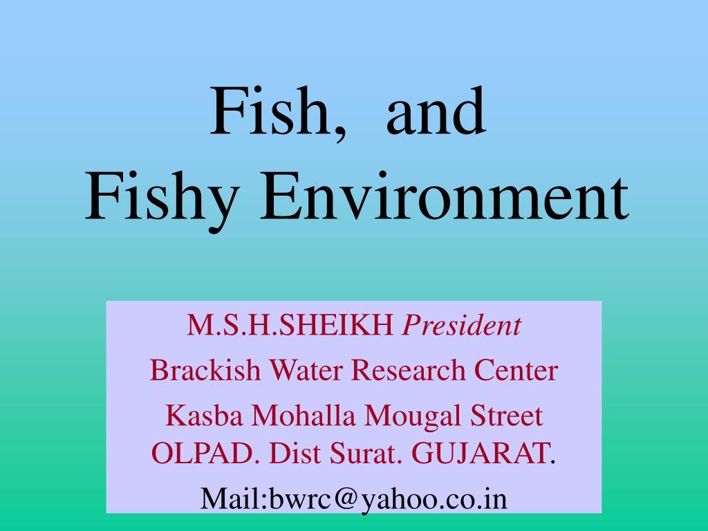 fish and fishy environment l.