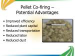 pellet co firing potential advantages
