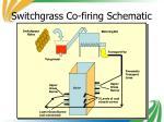 switchgrass co firing schematic