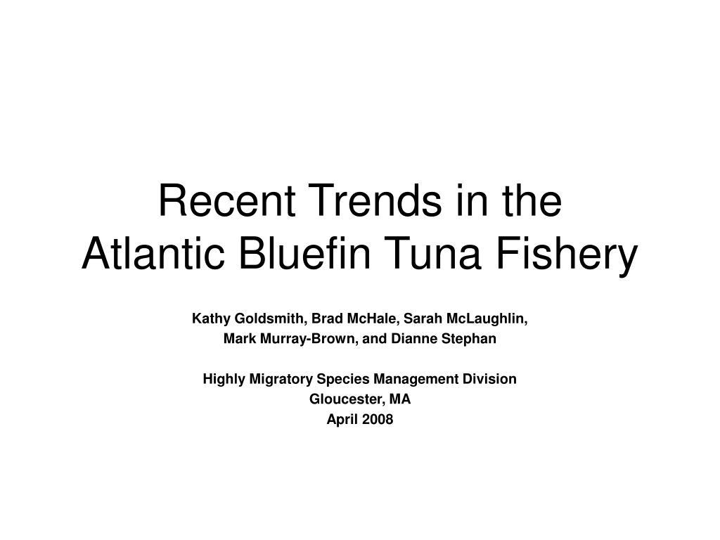 recent trends in the atlantic bluefin tuna fishery l.
