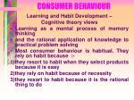 consumer behaviour25