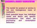 consumer market segmentation