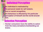 individual perception