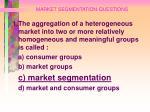 market segmentation questions83