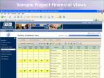 sample project financial views
