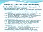 cartilaginous fishes diversity and taxonomy