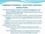 subphylum vertebrata early fishes and extant jawless fishes