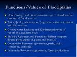 functions values of floodplains