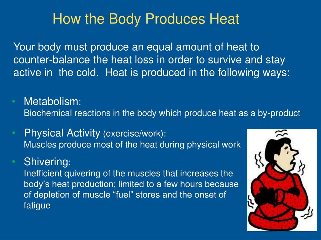 Your body must produce an equal amount of heat to counter-balance the heat loss in order to survive and stay active in  the cold.  Heat is produced in the following ways:
