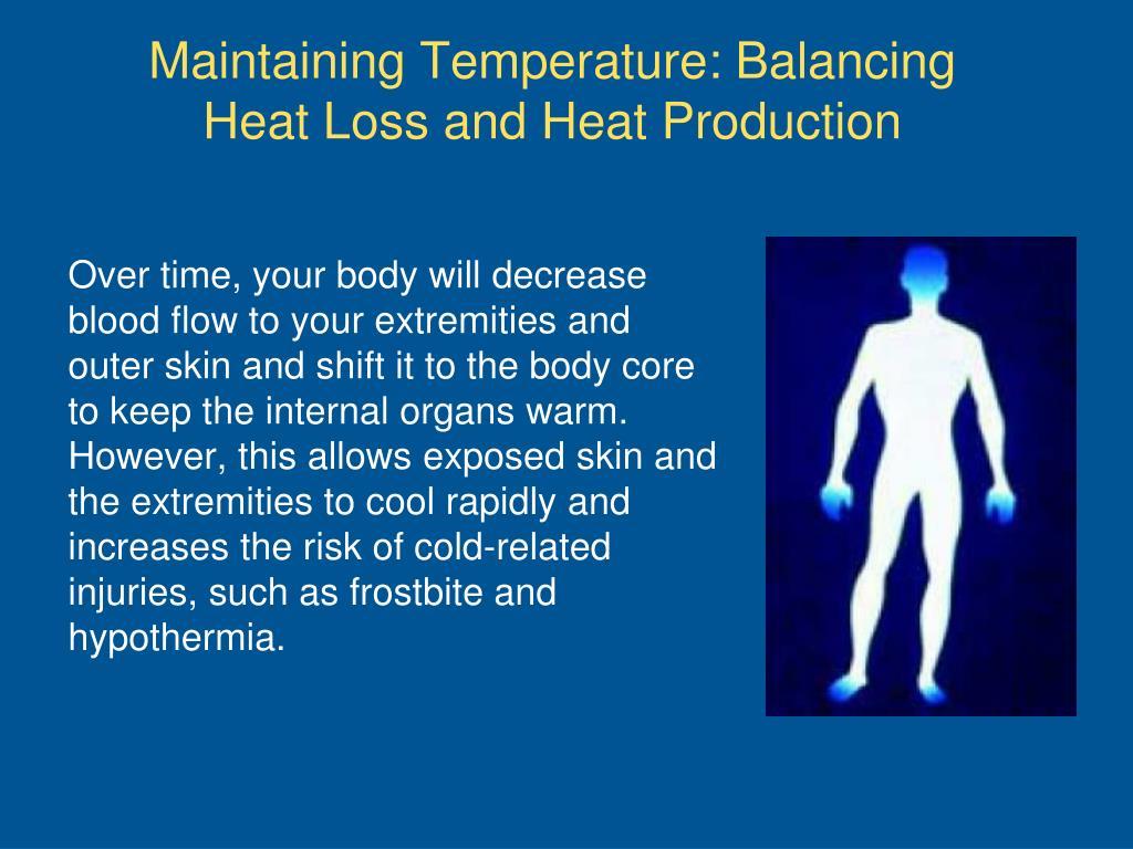 Maintaining Temperature: Balancing Heat Loss and Heat Production