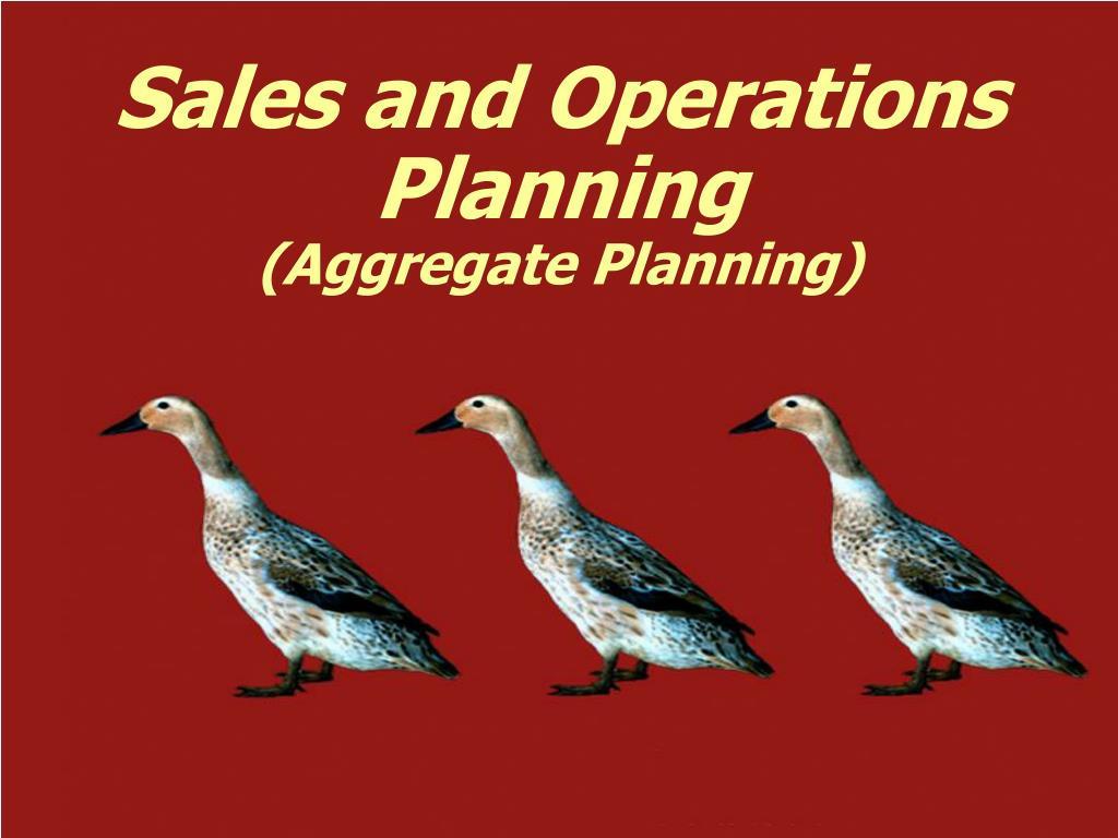 sales and operations planning aggregate planning l.