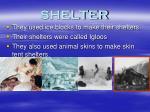 shelter54
