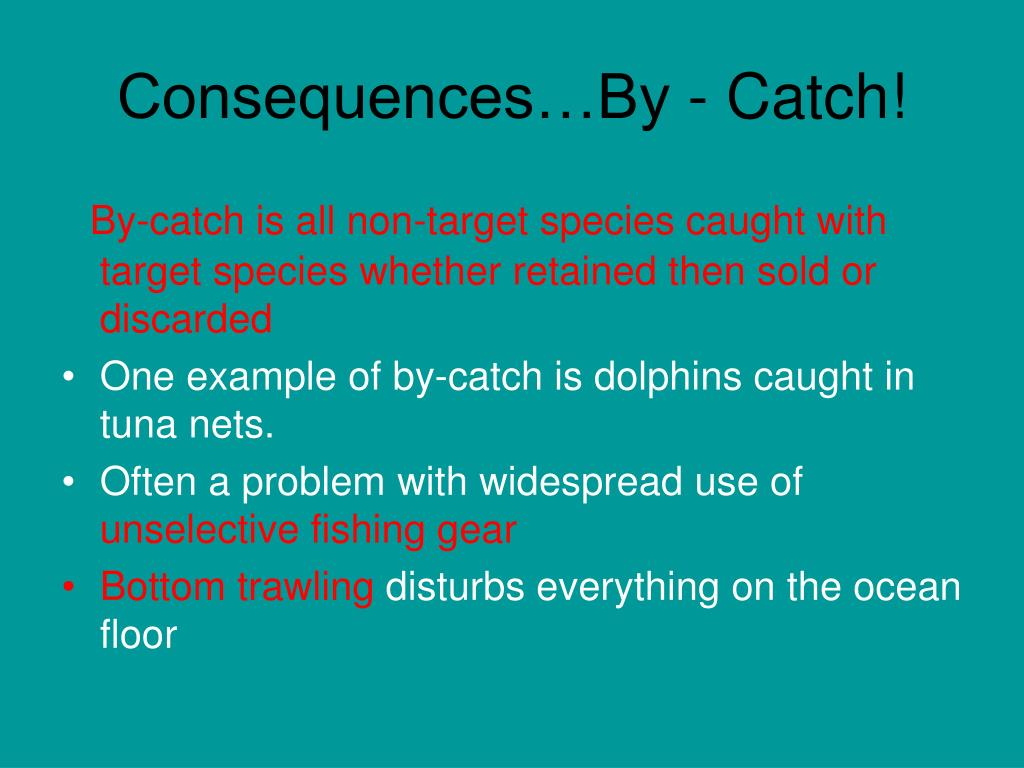 Consequences…By - Catch!
