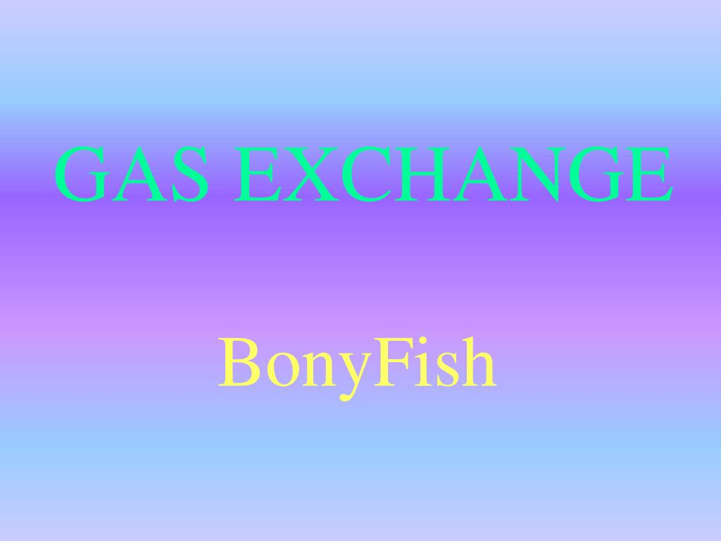 gas exchange l.