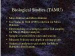 biological studies tamu
