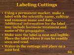 labeling cuttings60
